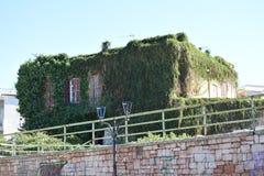 Завод-дом на Nafplio, Греции Стоковое Изображение