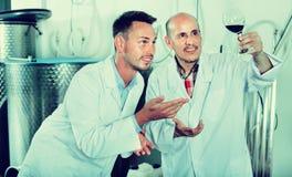Заводской рабочий рассматривая образец вина Стоковая Фотография