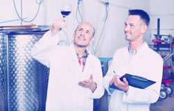 Заводской рабочий рассматривая образец вина Стоковое Изображение RF