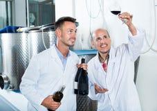Заводской рабочий рассматривая образец вина Стоковая Фотография RF