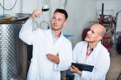 Заводской рабочий рассматривая образец вина Стоковые Фото