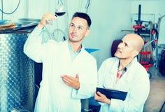 Заводской рабочий рассматривая образец вина Стоковое фото RF