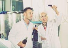 Заводской рабочий рассматривая образец вина Стоковое Фото