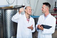 Заводской рабочий рассматривая образец вина Стоковые Изображения