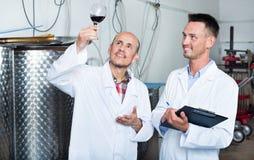 Заводской рабочий рассматривая образец вина Стоковые Изображения RF