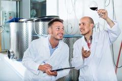 Заводской рабочий рассматривая образец вина Стоковое Изображение