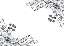 завод сухих флористических grungy листьев предпосылки старый бумажный запятнал сбор винограда Illustrat вектора нарисованное руко Стоковые Изображения