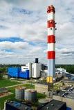 Завод топления Стоковое Фото