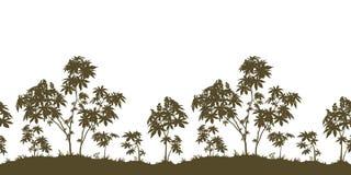 Заводы безшовных, рицинуса и силуэт травы Стоковое фото RF