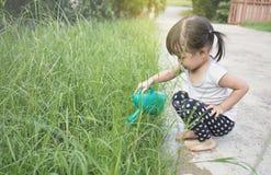 Заводы маленькой азиатской девушки моча Стоковое Фото