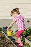 Заводы маленькой девочки моча от моча чонсервной банкы Стоковые Фотографии RF
