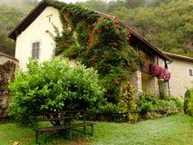 Заводы дома; Черногория Стоковые Фото