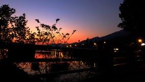 Заводы тени с красивым небом Стоковое Изображение