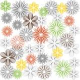 заводы phloxes сада цветков предпосылки Стоковые Фотографии RF