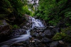 Заводь водопада Стоковые Изображения RF