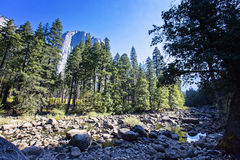 Заводь в национальном парке Yosemite, Калифорнии, США Стоковые Фотографии RF