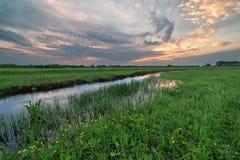 Заводь в поле на заходе солнца Стоковая Фотография RF