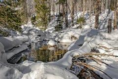 Заводь зимы в горах Стоковое Изображение