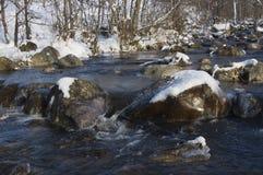 Заводь зимы Стоковая Фотография