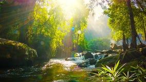 Заводь около водопада в национальном парке Phnom Kulen Камбоджа, Siem Reap видеоматериал