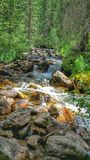 Заводь от водопада в скалистых горах Стоковая Фотография