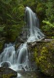 Заводь падений (Mt более ненастное NP0 Стоковые Фотографии RF