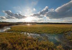 Заводь пеликана на заходе солнца в национальном парке Йеллоустона в Вайоминге Стоковая Фотография