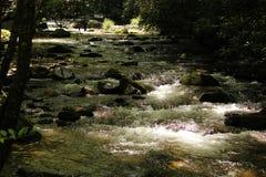 Заводь пуков, Cherokee, Северная Каролина Стоковое Изображение