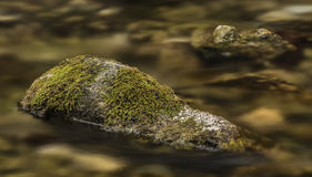 Заводь Biely с камнями и чистой водой Стоковое Фото