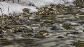 Заводь Biely с камнями и чистой водой Стоковые Изображения RF