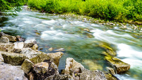 Заводь Cayoosh на месте для лагеря хлопока вдоль дороги озера Duffy Стоковые Фото