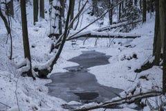 Заводь Snowy Стоковые Фото