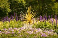 Завод юкки окруженный цветками Стоковые Фото