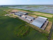 Завод для засыхания и хранения зерна Взгляд сверху Стержень зерна Стоковое Изображение RF