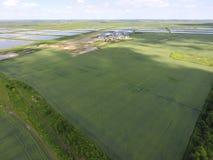 Завод для засыхания и хранения зерна Взгляд сверху Стержень зерна Стоковое Фото