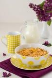 Завтрак включая muesli и молоко Стоковые Фотографии RF