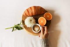Завтрак в положении квартиры кровати Рука женщины держа чашку кофе, деревянный отрезок с свежим цветком круассана, апельсина и бе Стоковое Изображение