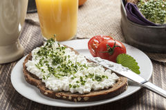 Завтрак здорового лета весны низко- тучный стоковые изображения rf