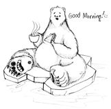 Завтрак медведя колы говорит доброе утро сидя на льде Стоковое Фото