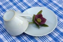 Завтрак на голубой скатерти Стоковая Фотография