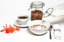 завтрак свежий Стоковая Фотография