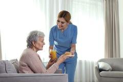 Завтрак сервировки медсестры к пожилой женщине внутри помещения Помощь старших людей стоковые фото