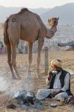 Завтрак утра на верблюде Pushkar справедливом Стоковое Фото