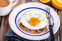 Завтрак: яичница с грибами и pesto на здравице Стоковая Фотография