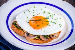 Завтрак: яичница с грибами и pesto на здравице Стоковые Фотографии RF
