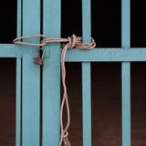 Завязанная веревочка Стоковое Фото