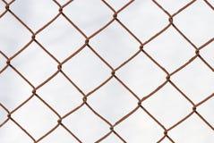 завязанная решетка Стоковое Изображение