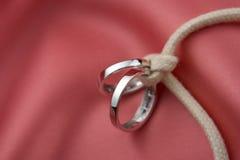 завязанные кольца wedding Стоковые Изображения RF