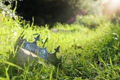 загадочное и волшебное фото кроны короля над камнем в ландшафте древесин или поля Англии со светлым пирофакелом средневеково стоковое изображение rf