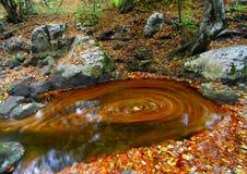 загадочный водоворот реки Стоковые Изображения RF